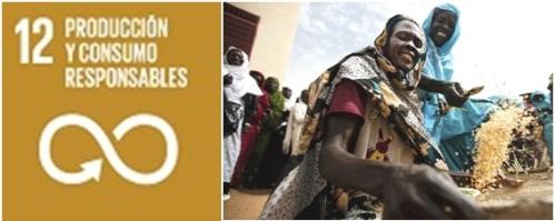 ODS 12 - Consumo y Producción Sostenible y Responsable - Fundación MUSOL